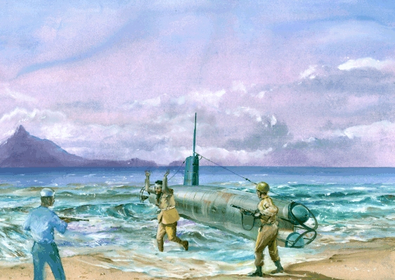 Opinion, japanese midget submarine newspaper accounts apologise